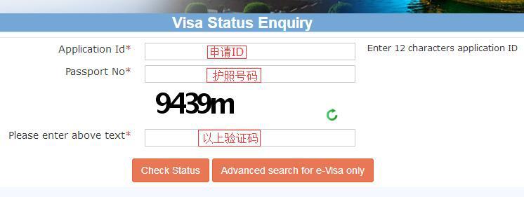 印度签证进度查询